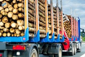 Für LKW gilt eine spezifische Höchstgeschwindigkeit auf Landstraßen und Autobahnen.